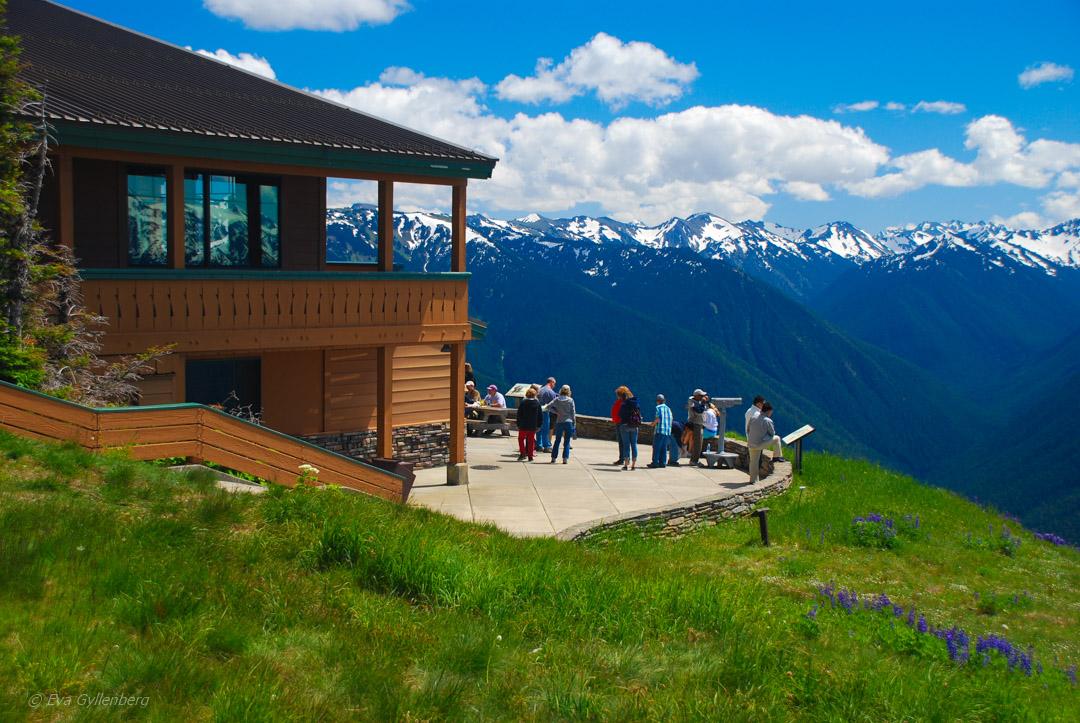 Olympic National Park: Dimmiga stränder och alpina ängar