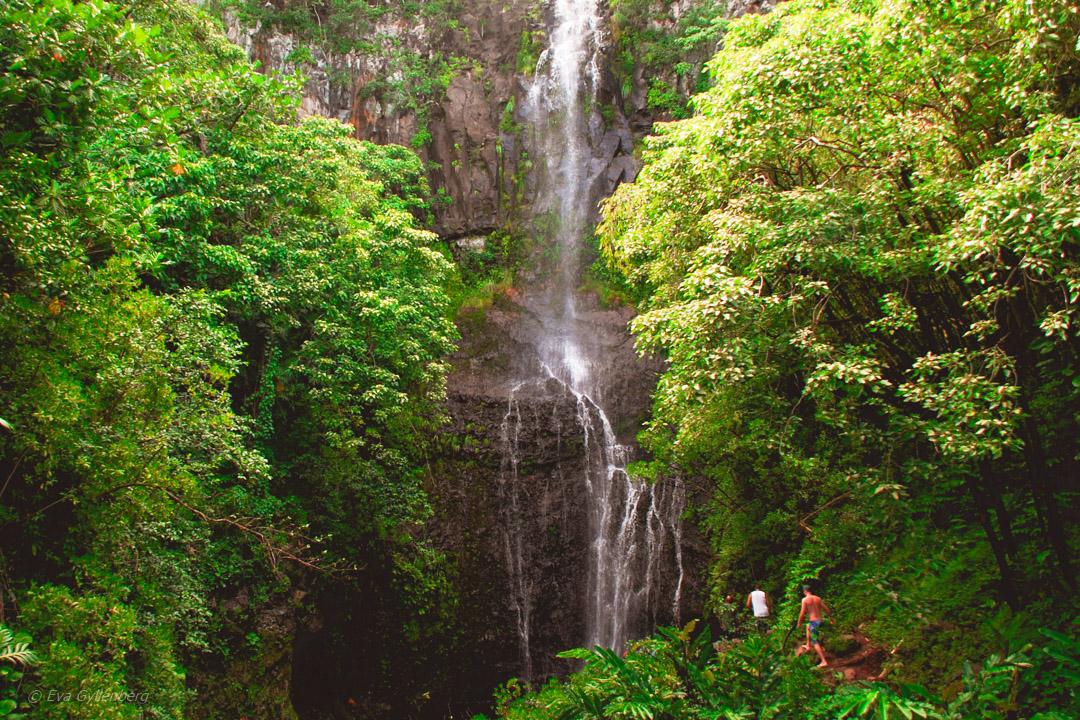 Wailua Falls - Rpad to Hana - Maui - Hawaii