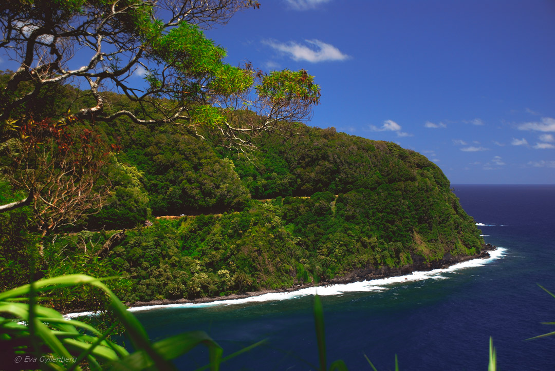 Road to Hana - Maui - Hawaii