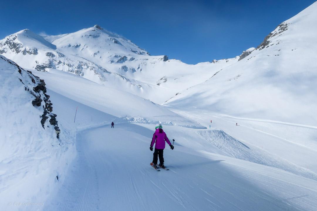 Skidåkning i Schweiziska Jungfrau