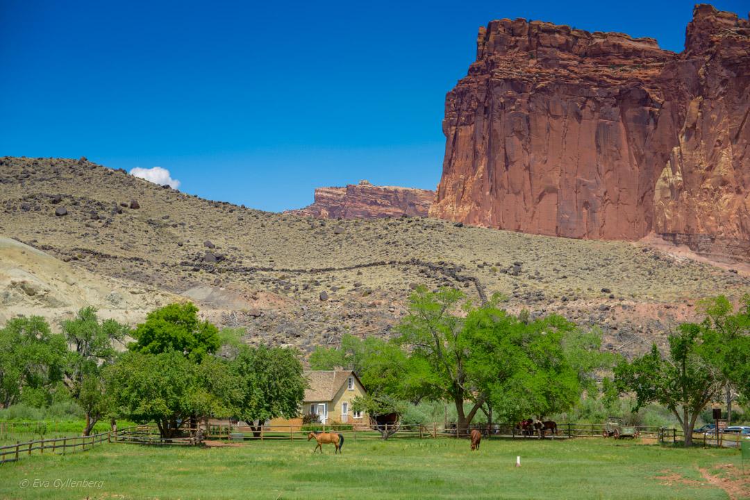 Road trip i Utah & Arizona - dagsplaner för 18 dagar 20