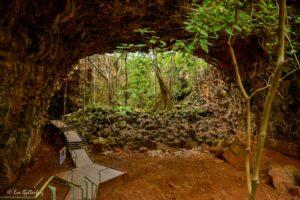 Undara - Äventyr i Australiens outback 15
