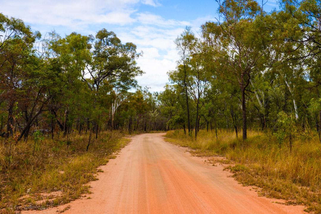 Undara - Äventyr i Australiens outback 36