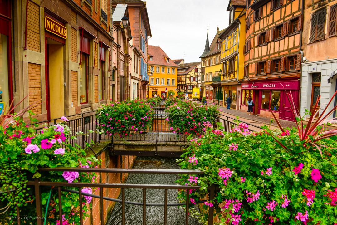 En av flera kanaler i Colmar