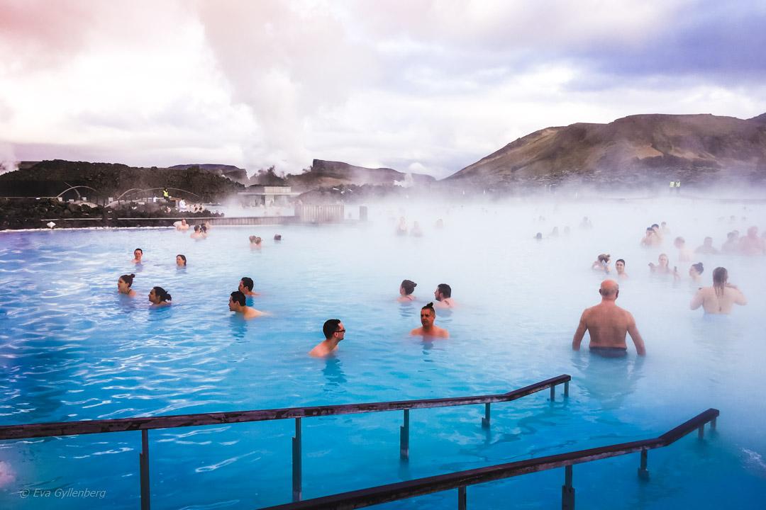 Reseguide: Blue Lagoon på Island