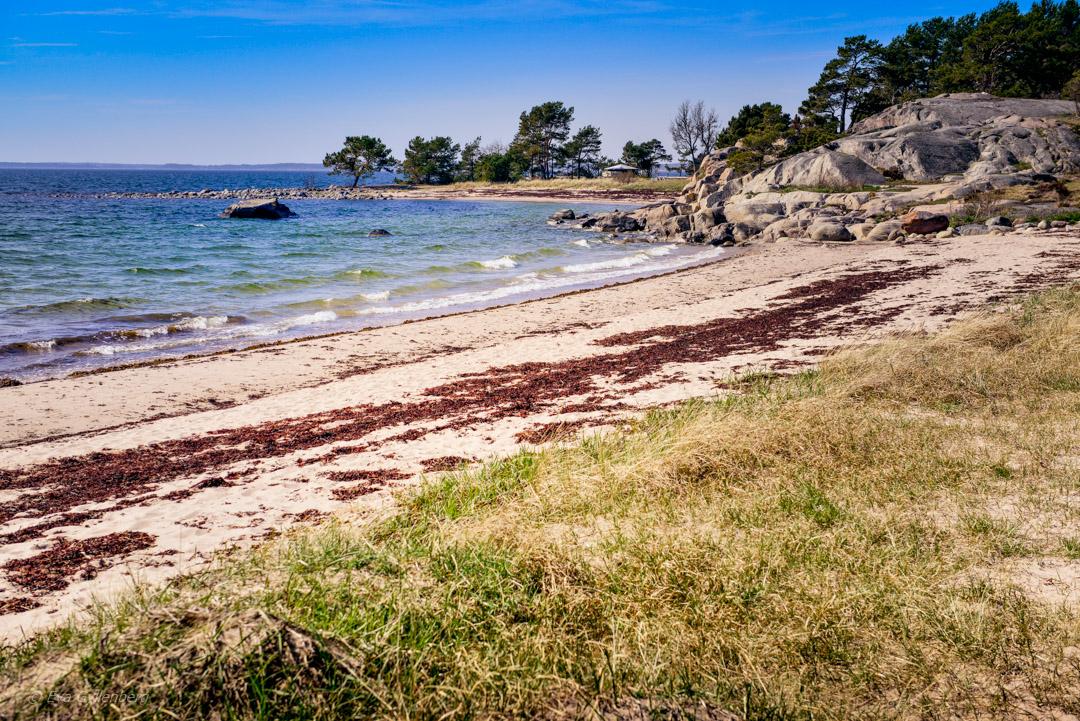Sandön - Stora Trouville-stranden
