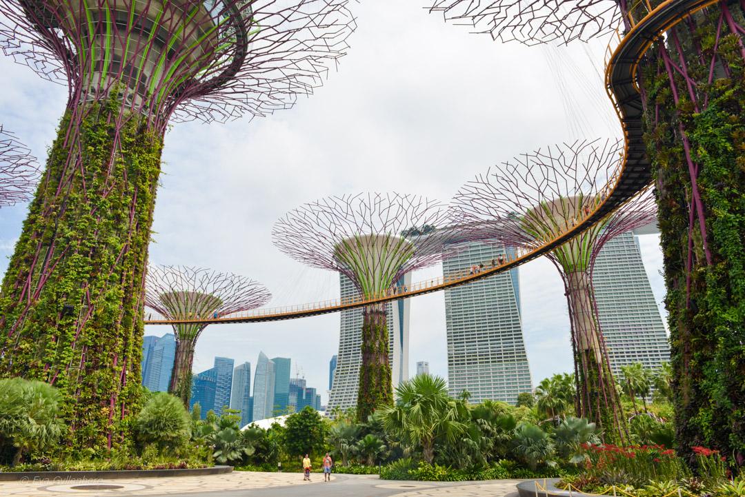 5 hotelltips i Singapore för alla smaker