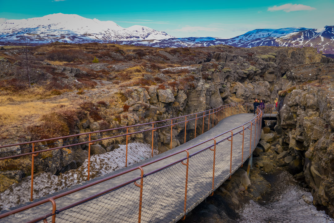Thingvellir nationalpark - Island