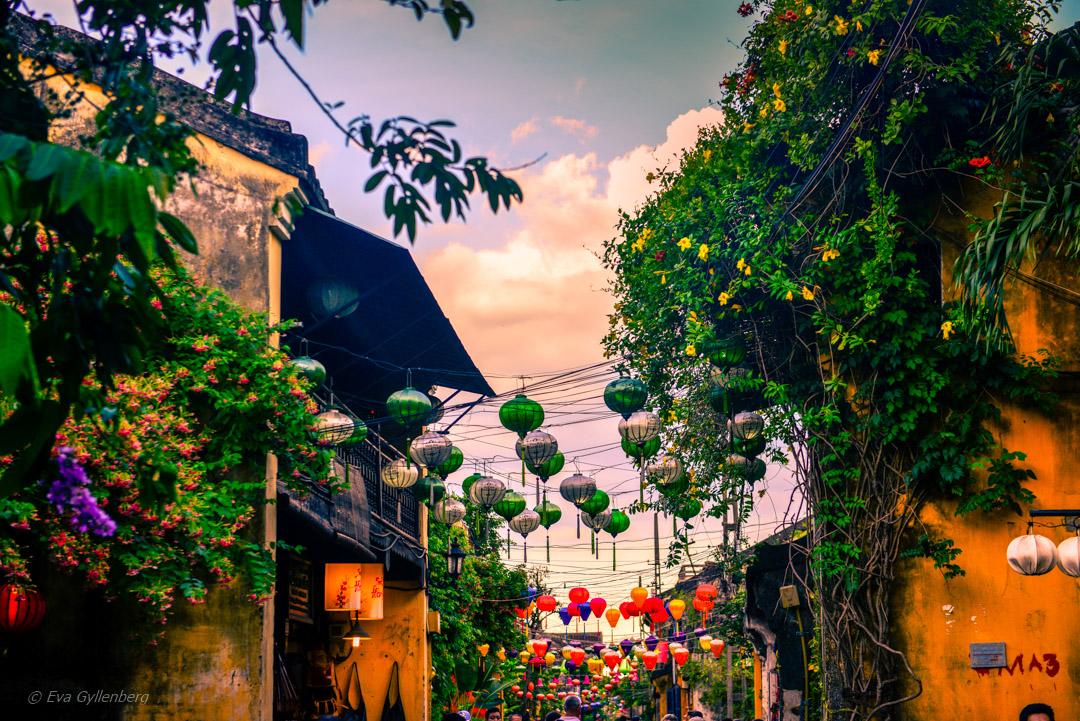 Sidenlamporna i Hoi An
