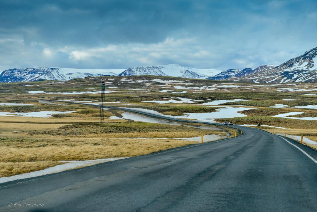 Ringvägen - Island - dagsutflykt från Reykjavik till Vik