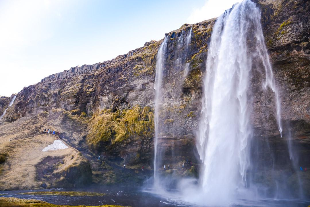 Seljalandsfoss vattenfall - Island - Dagsutflykt från Reykjavik till Vik