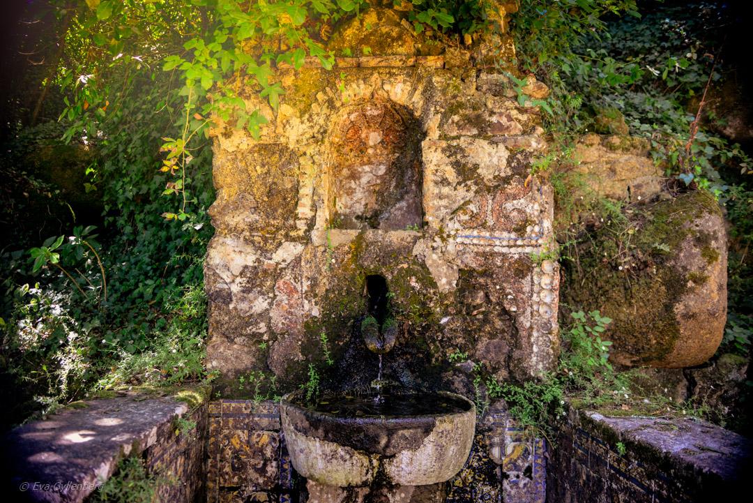 Convento dos Capuchos - Det övergivna klostret 6