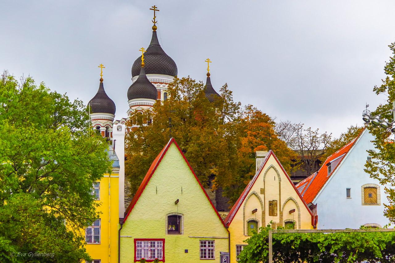 Alexander Nevski - Tallinn