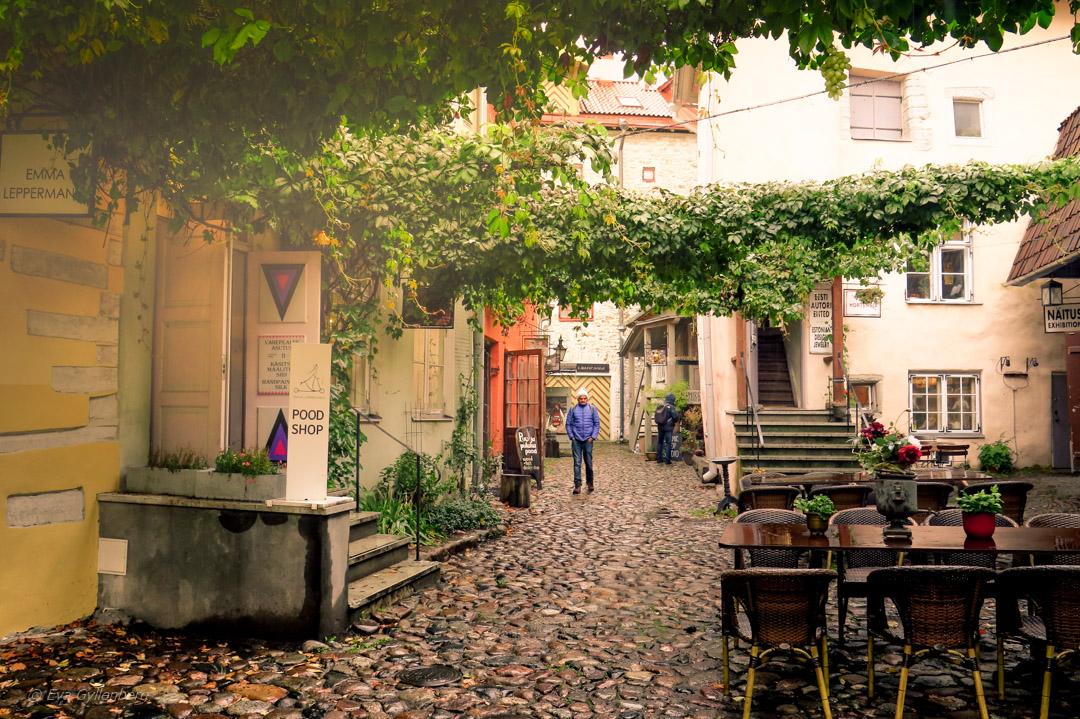 Chocolaterie de Pierre - Tallinn