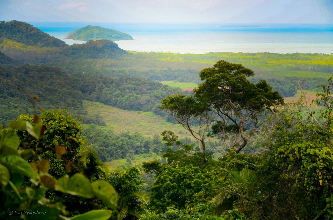 Daintree Queensland Australien 11