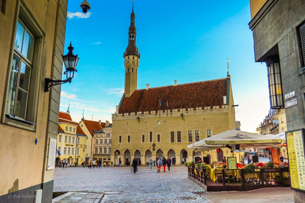Tallinn - Stortorget