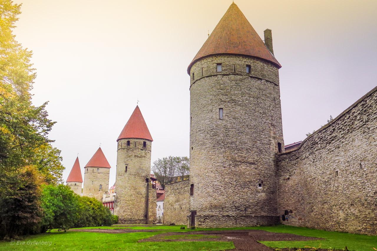 Tallinn - muren