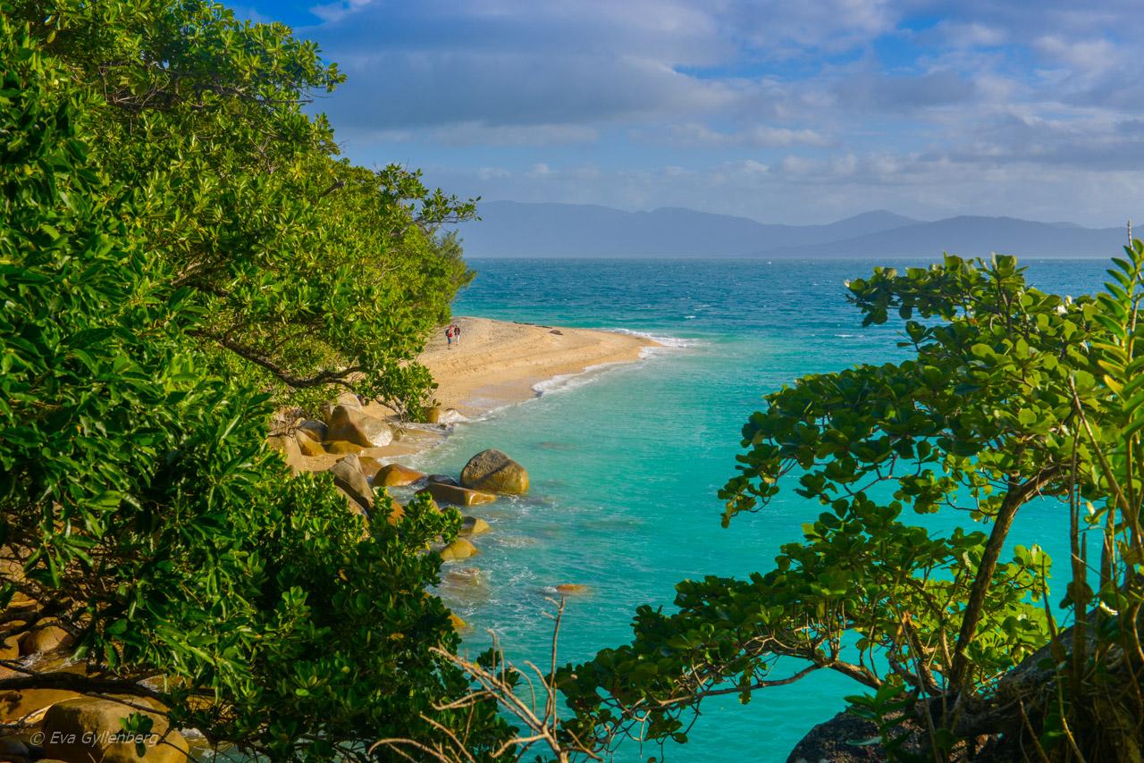 Fitzroy Island -Nudey Beach