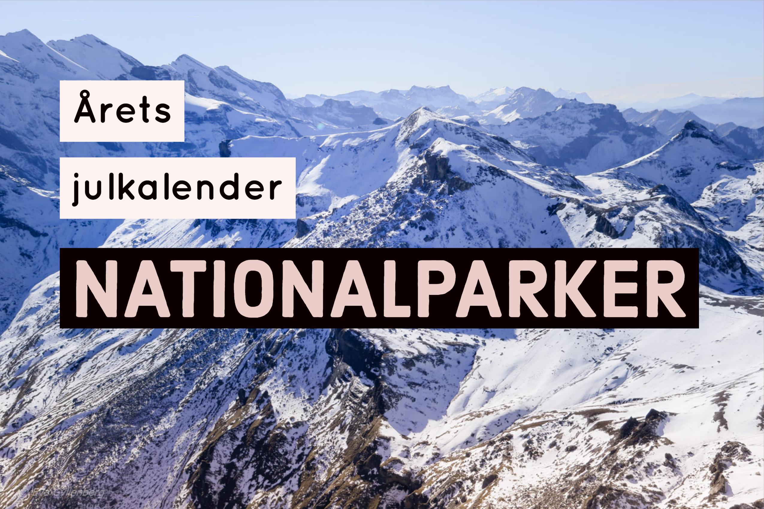 Dags för årets julkalender med tema nationalparker!