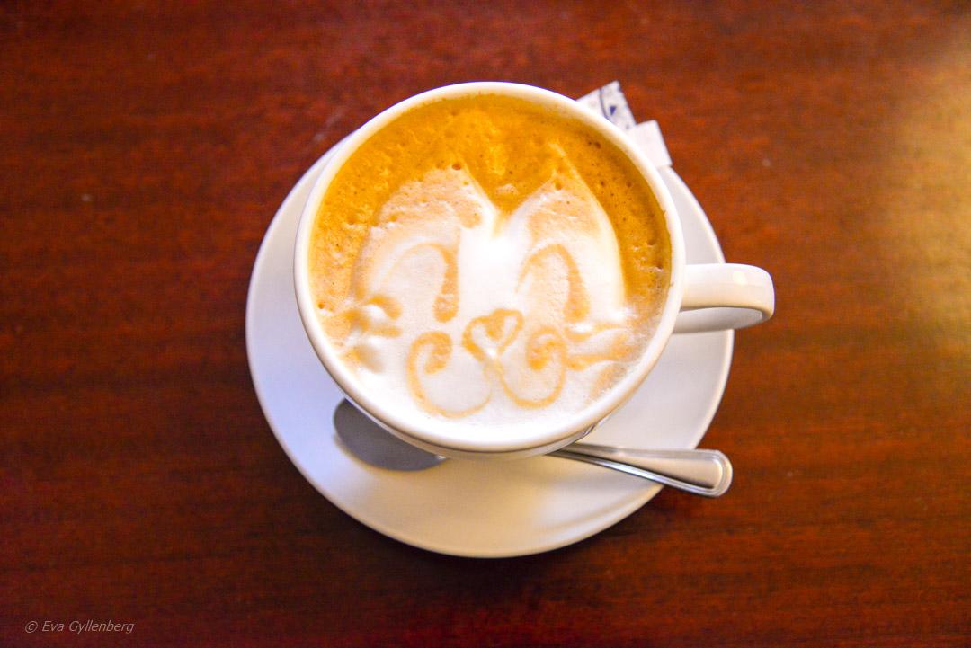 Kattcafé i Krakow