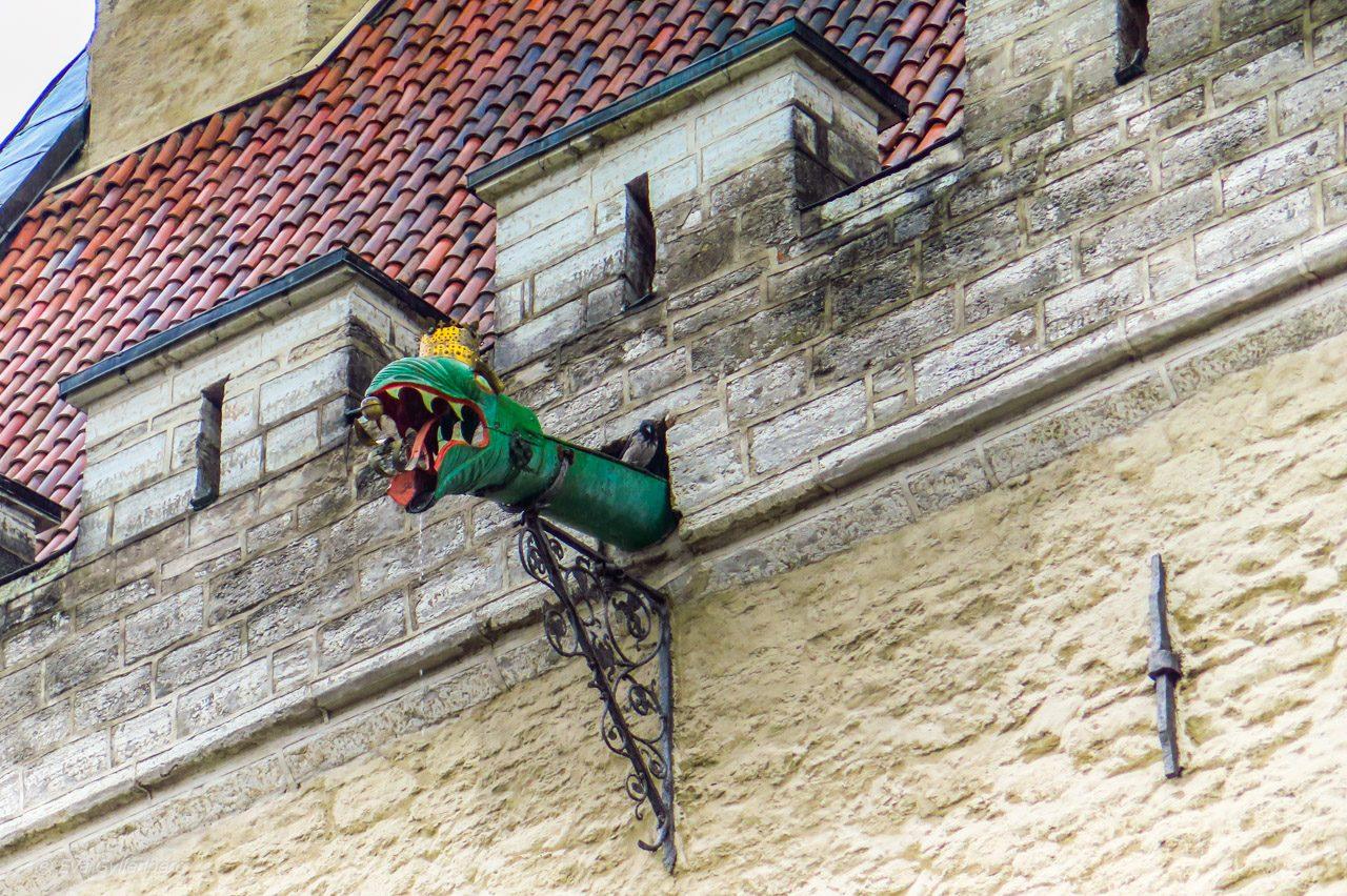 Draken på rådhuset - Tallinn - Estland