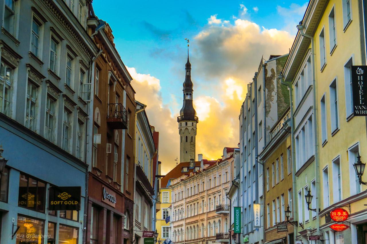 Fotoalbum från Tallinn