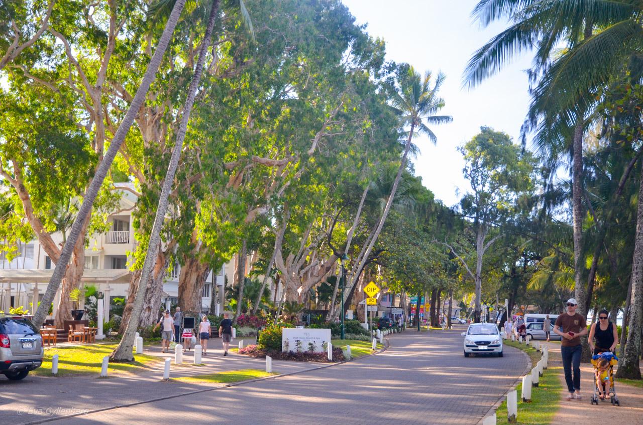 Palm Cove - Cairns - Australien