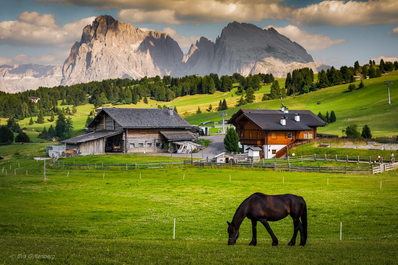 Vandra i Dolomiterna – Seiser Alm