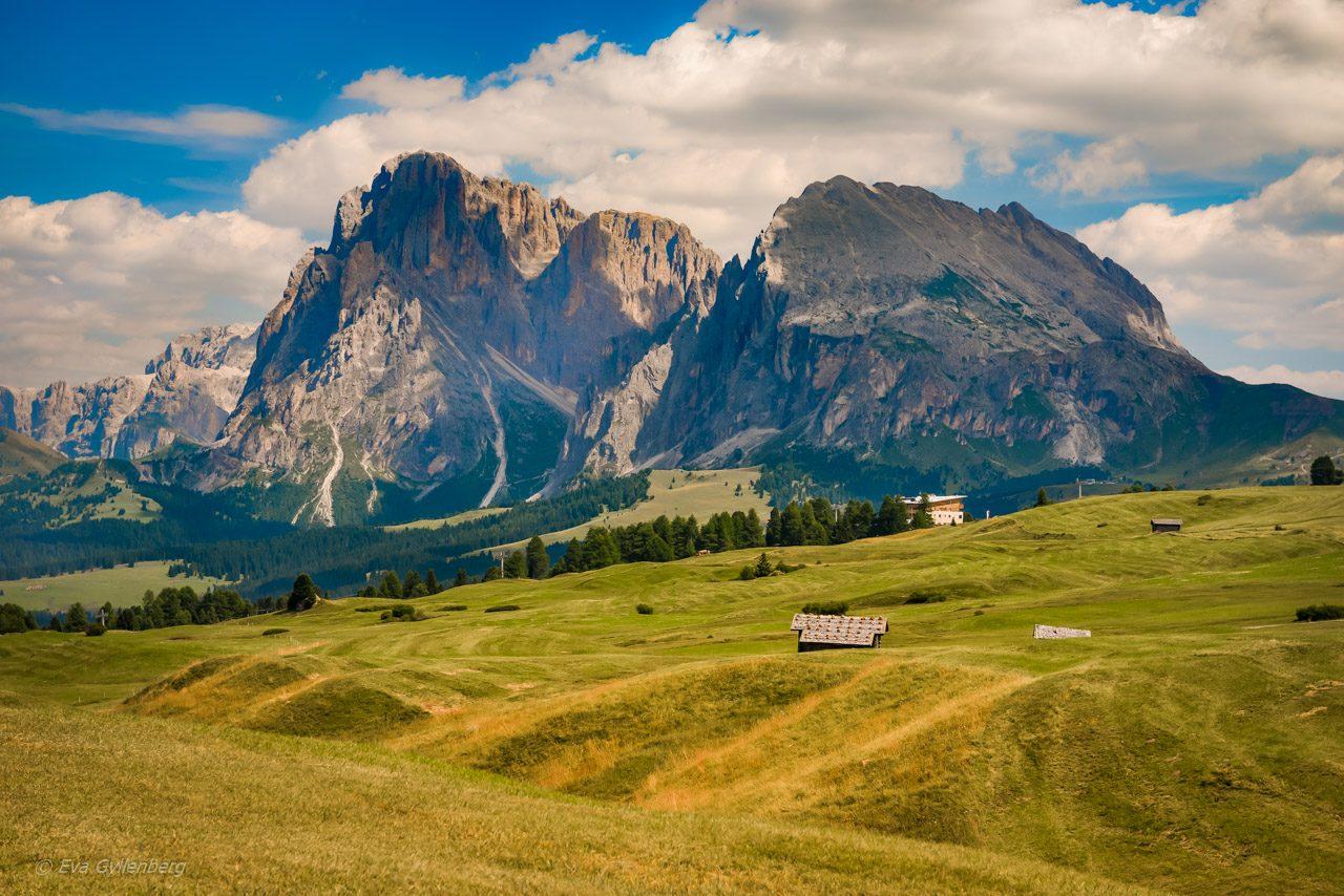 Vandra i Dolomiterna - Seiser Alm 25
