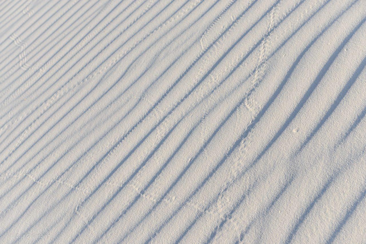 Vita drömlandskap i White Sands | New Mexico 29