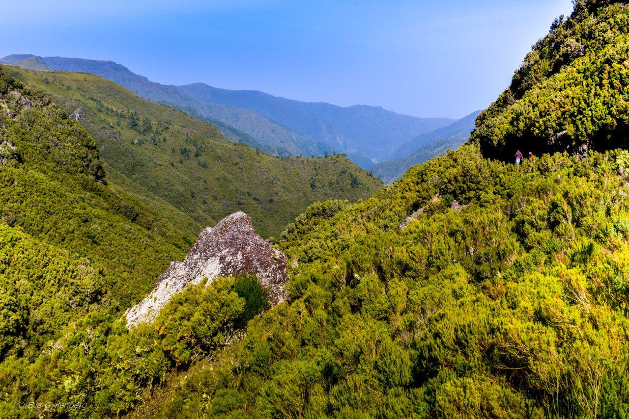 Levadavandring - Rabacal - Madeira