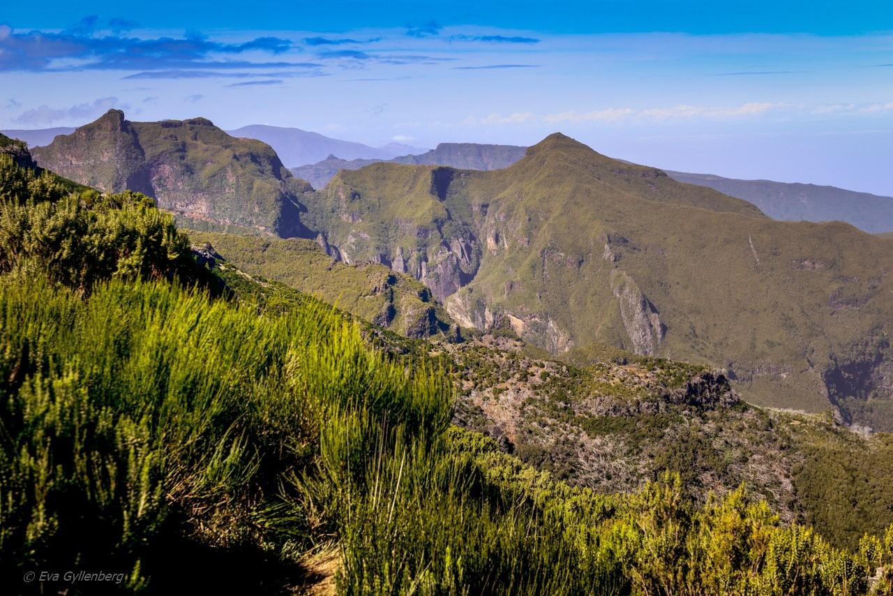Pico Ruivo - Madeira