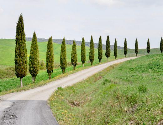 Bila i Italien - Toscana