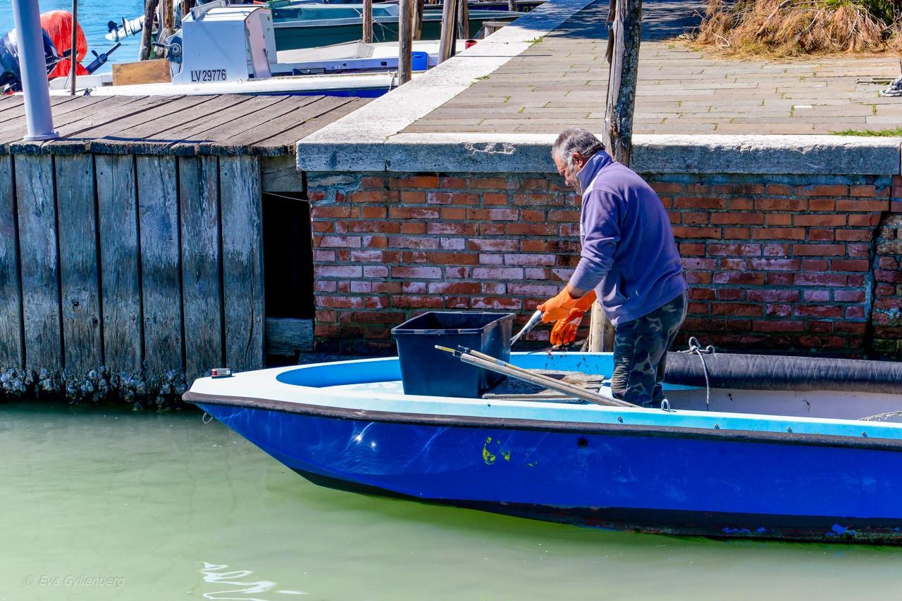 Fiskare på Burano - Venedig - Italien