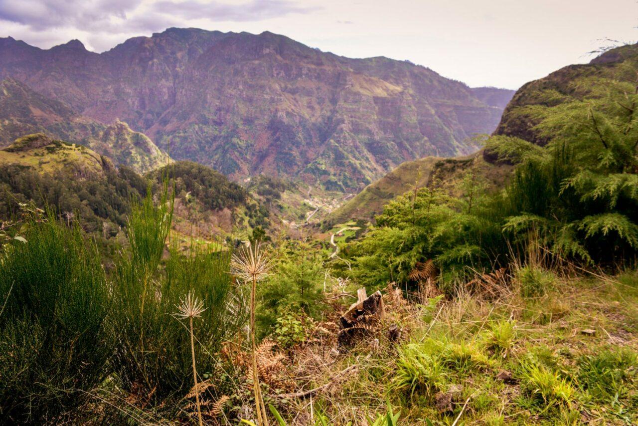 Madeiras berg