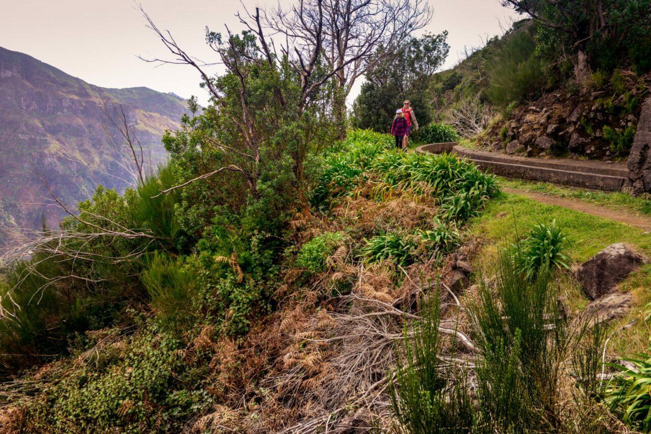 Branta sluttningar vid levadan - Madeira