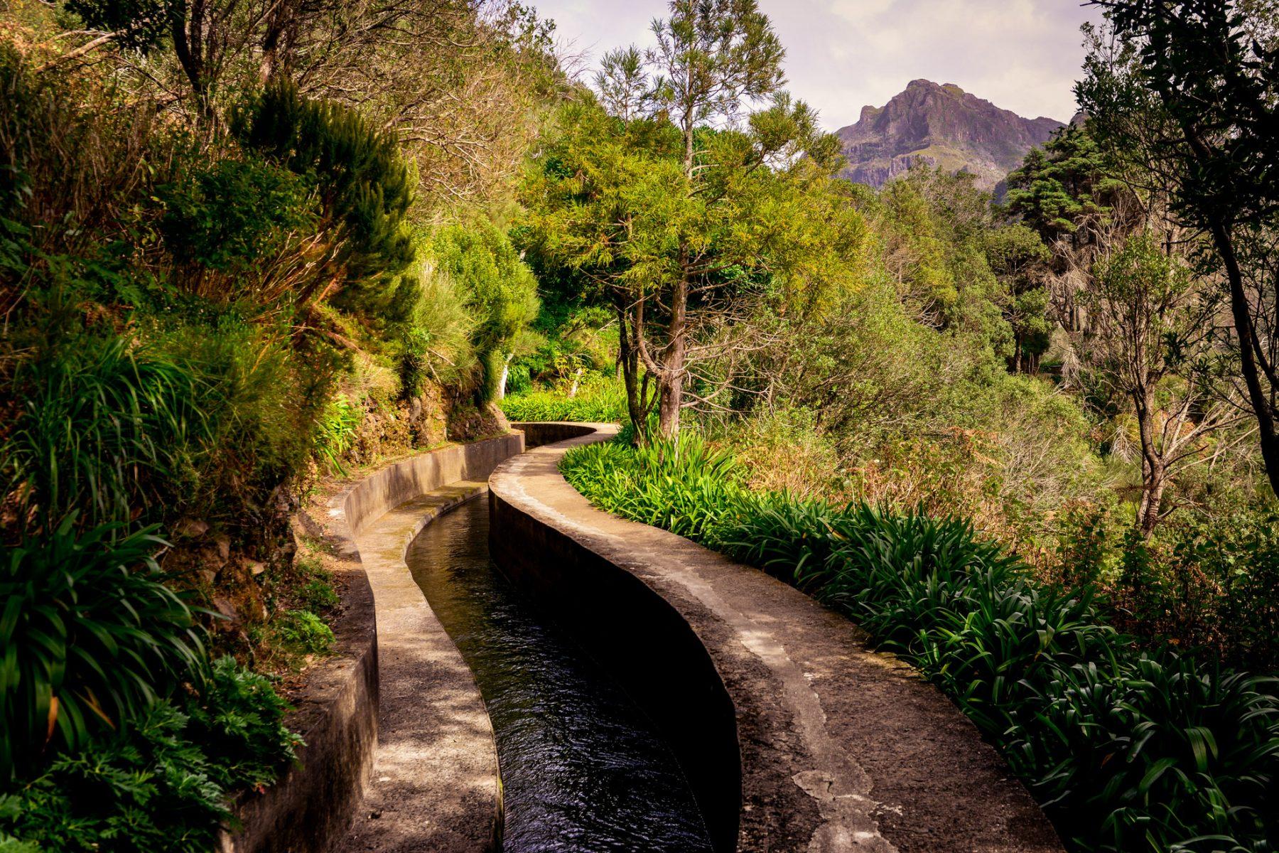 Snirklig levada - Madeira