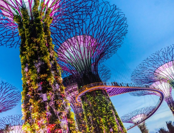 Singapore reseguide
