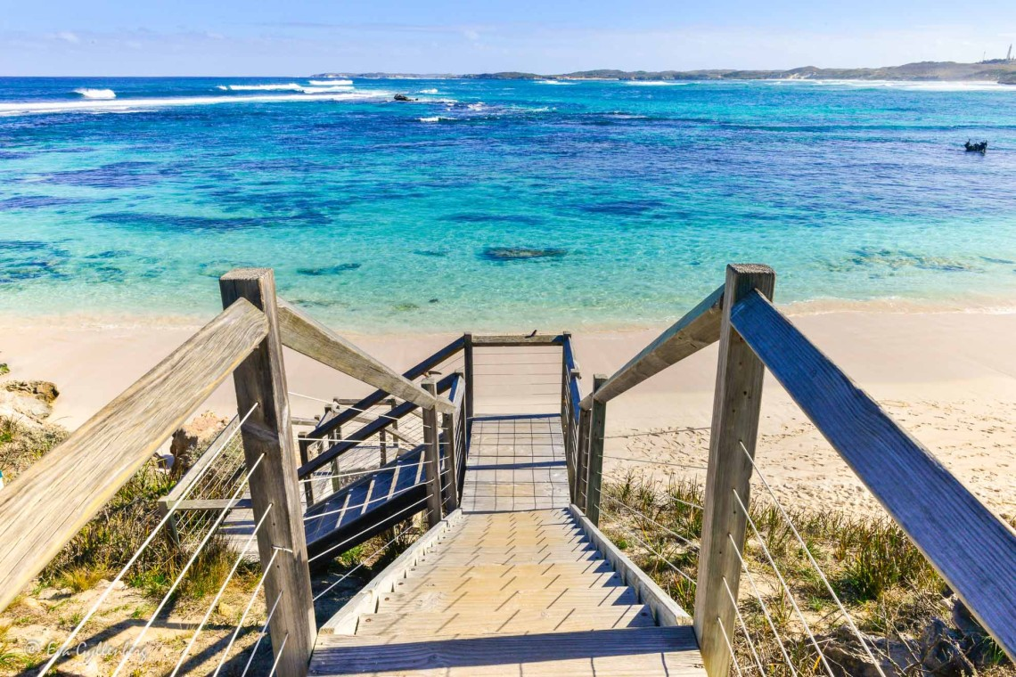 Rottnest Island - Quokkas, cyklar och bländande stränder 1