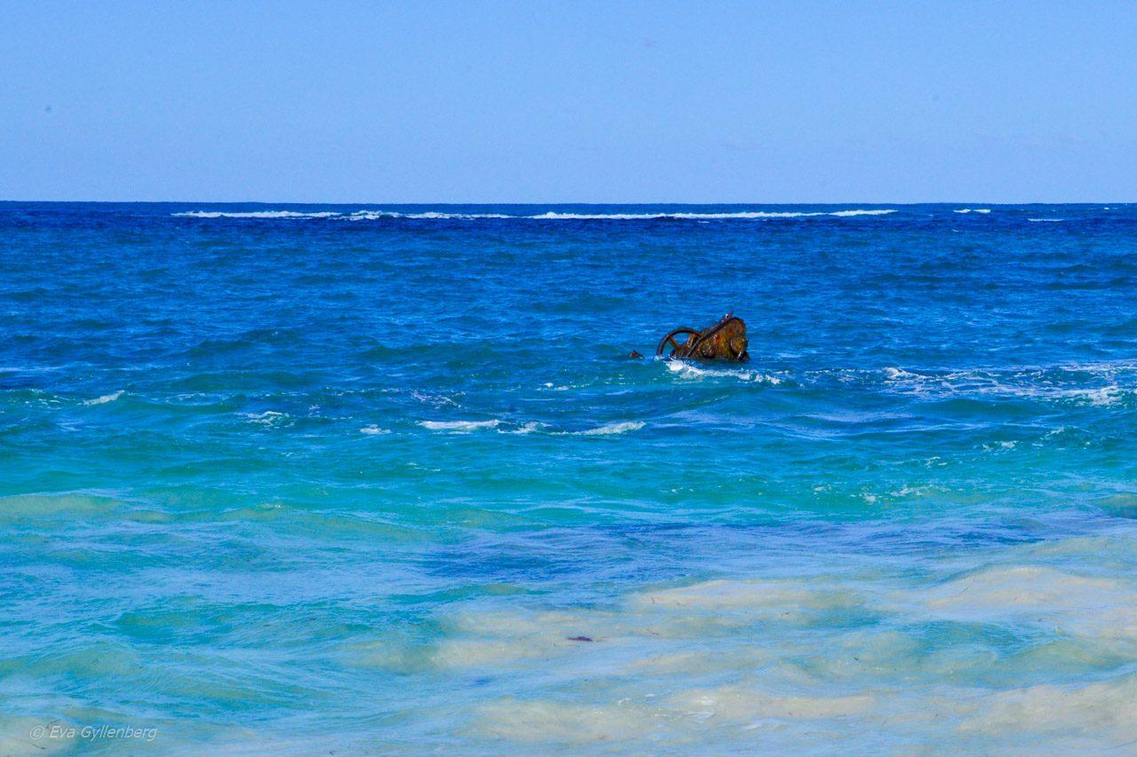 Rottnest Island - Australien - Vrak