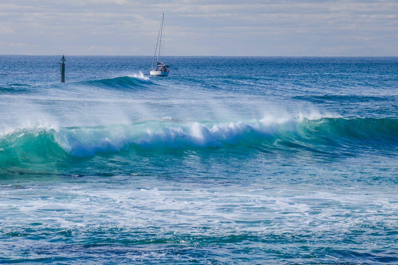 Rottnest Island - Australien - Vågor
