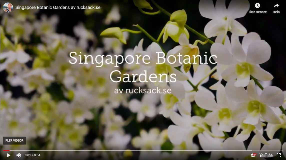 Singapore Botanic Gardens Youtube