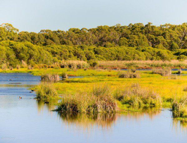 Yanchep National Park