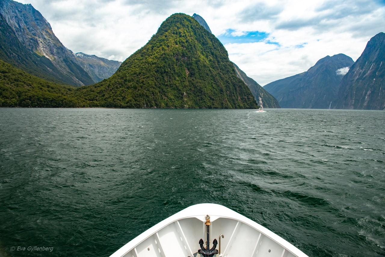 Båtför i Milford Sound