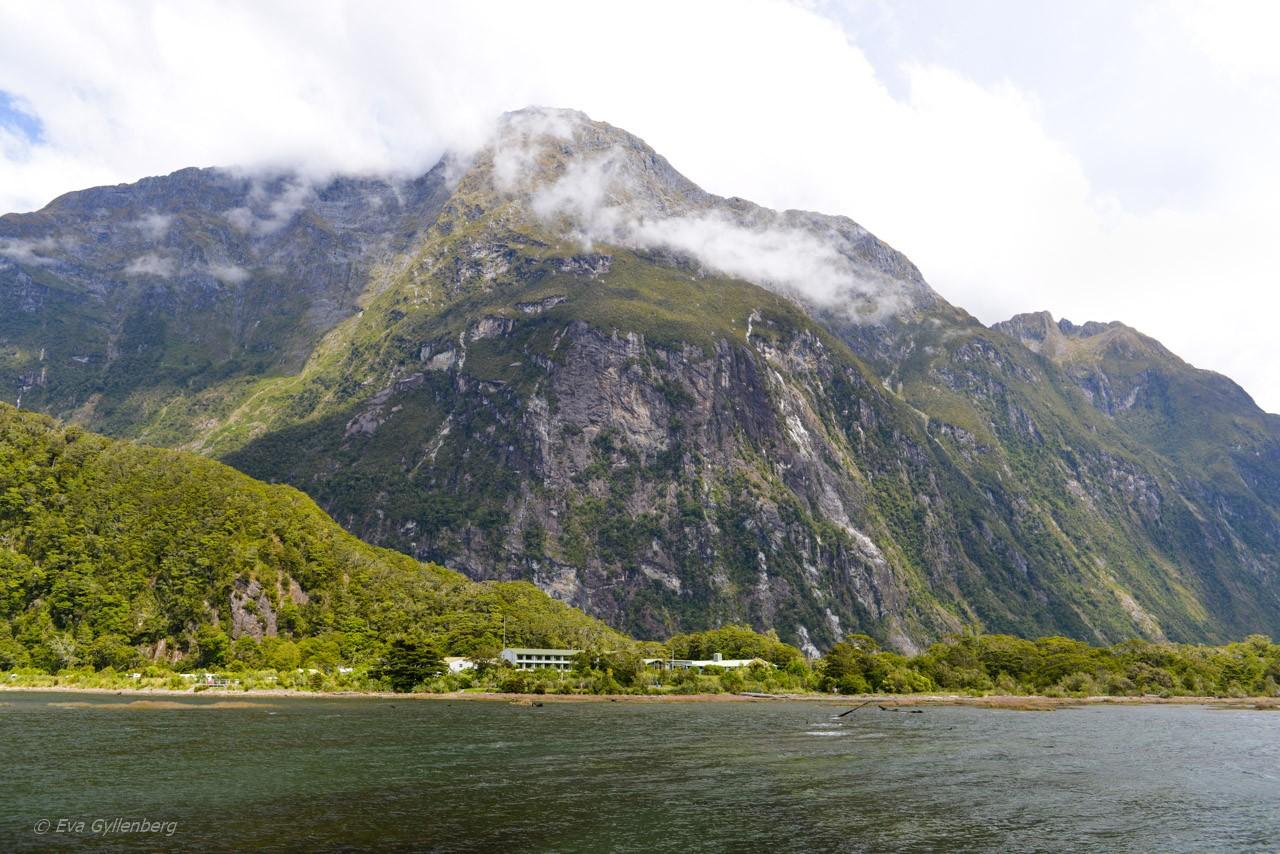 Hus i Milford Sound