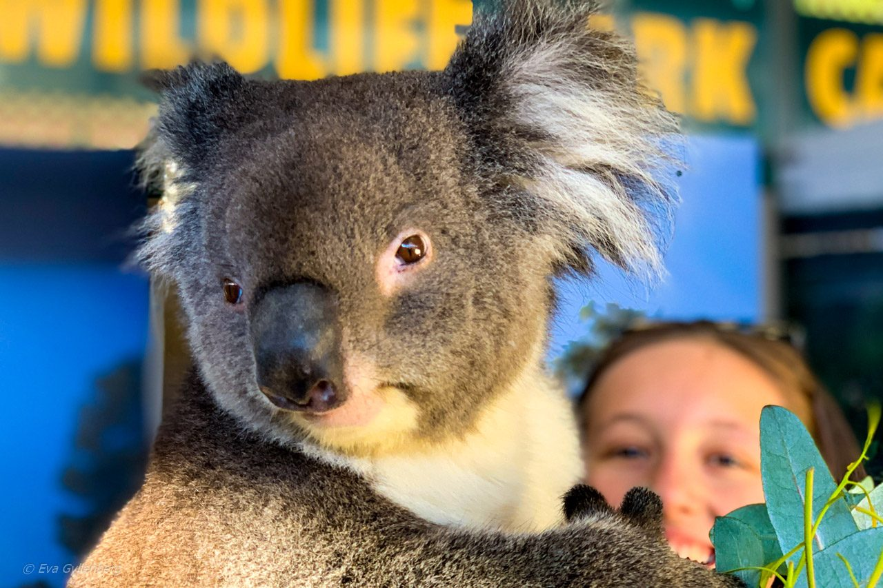 Perth - Australien