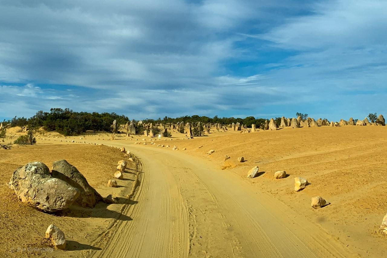 Bilväg - Pinnacles desert - Australien