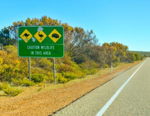 Bilkörning - Australien