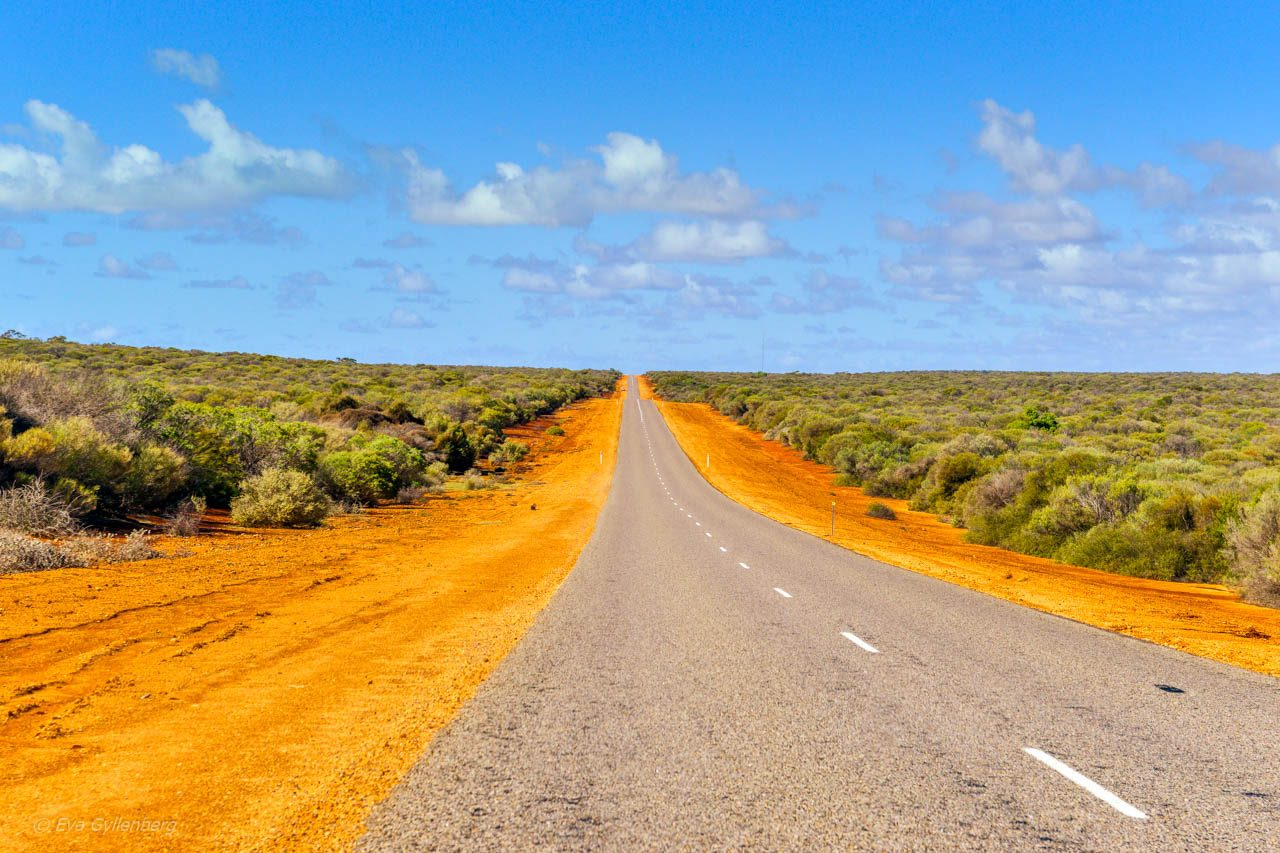 Bilkorning-Australien