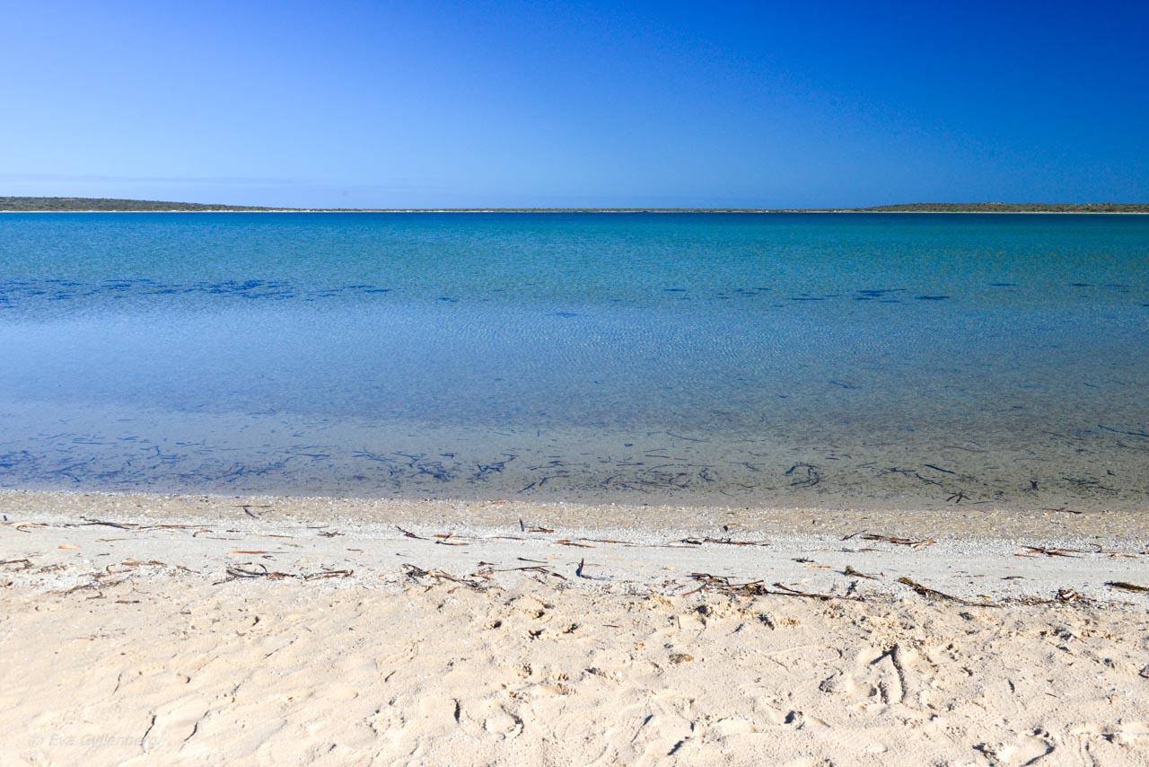 LIttle Lagoon vid Shark Bay